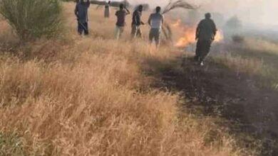 Photo of حريق يزحف من بوخليخيل جنوب لخذيرات إتجاه مناطق تابعة لبلدية أقورط ومقاطعة كنكوصة
